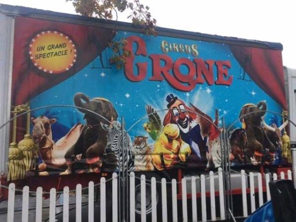 Cirque crone