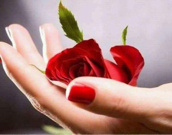 Bonsoir, tu es la seule à qui je parle et la vraie amitié n'est pas adoptée entre un jour et l'autre merci.