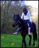 Photo de story-of-horse
