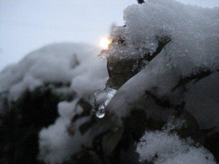 """Titre : Y'a comme un larsen ... Image : """"Un éternel hiver"""" by Célyna  Musique : Les cours de lycées  ~  Damien Saez"""