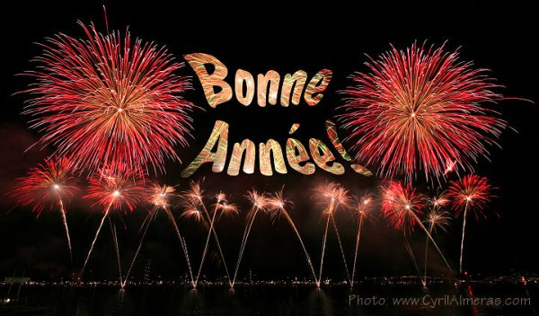 TRÈS BONNE ANNÉE LES AMIS !!!