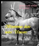 Photo de i-love-horse-and-poney
