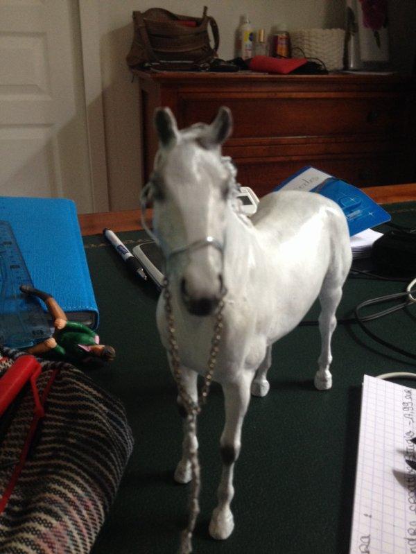 Licol pour chevaux arabe à vendre taille breyer