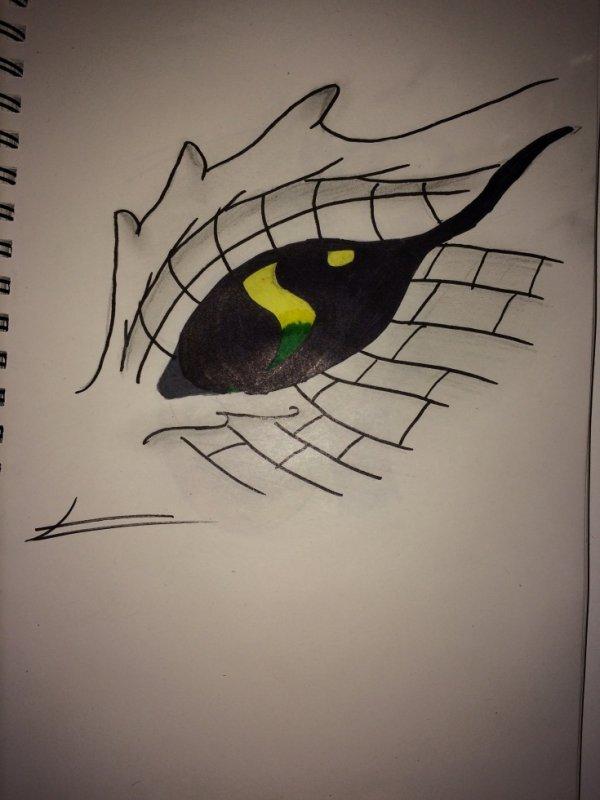oeil de dragon 1