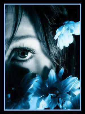 les fleurs bleu..................comme moi