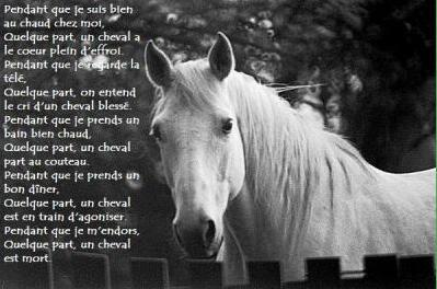 Un Ptit Poeme Ma Vie Mes Amis Ma Famille Mes Délires