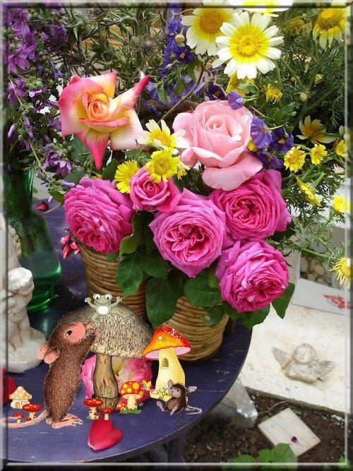 bouquet  du dimanche !