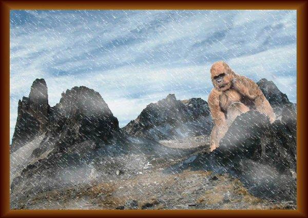 le yéti L'abominable homme des neiges