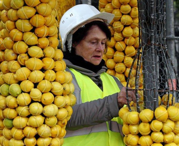 Fête du Citron 2017 à Menton : du 11 février au 1 mars !