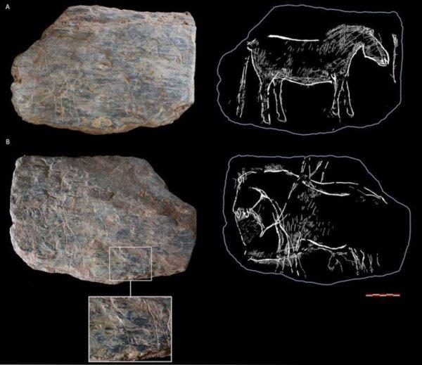 Les plus anciennes pierres gravées de Bretagne !