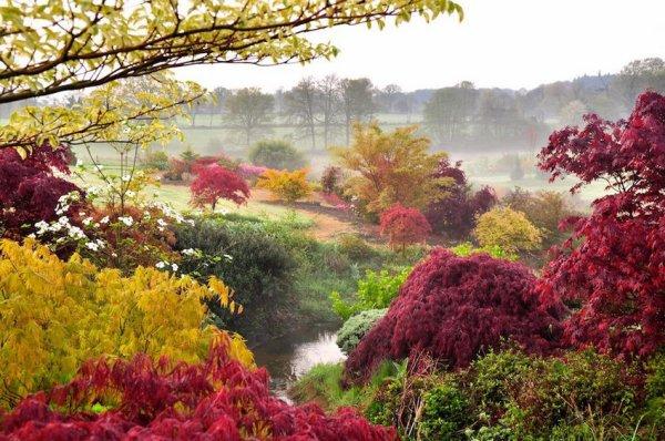 Parc Floral et Botanique de haute Bretagne