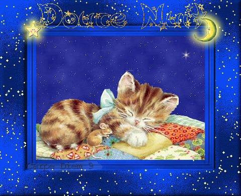 bonne  nuit  et  petit déj'