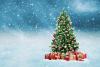 Origines et Légende du sapin de Noël