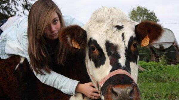 belle   histoire ::    Diane et sa « petite » vache Heidi ont attiré vos regards attendris en 2017.