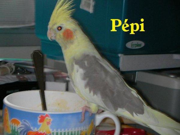 Deux ans déja que Pépi est morte.