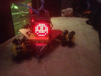 Homemade robots :)
