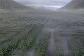Tenshi no Namida - Chapitre 21 : Le labyrinthe maudit