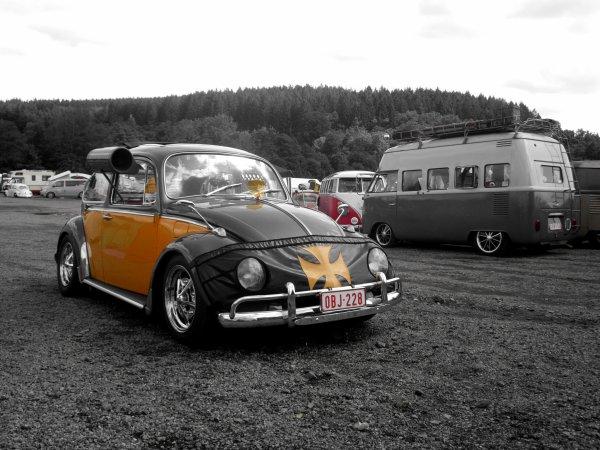 vw bug show 2015
