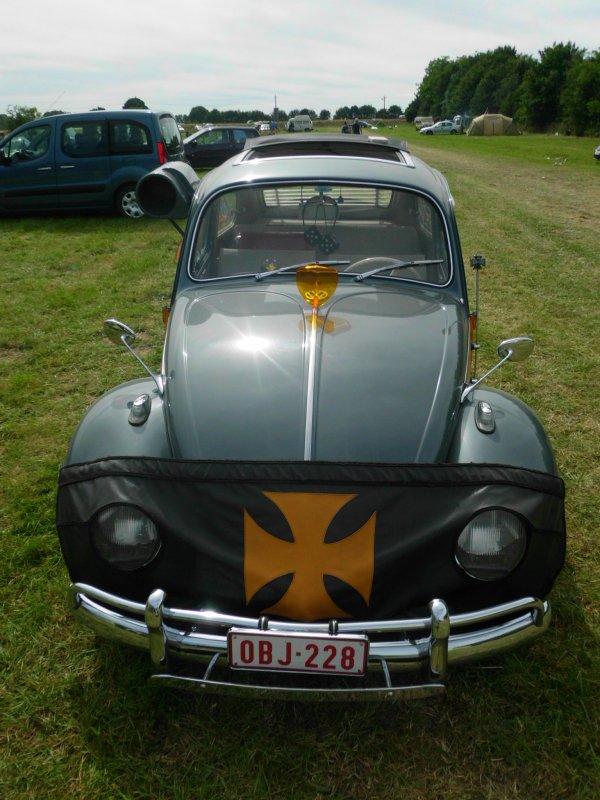 2015 european bug in 6