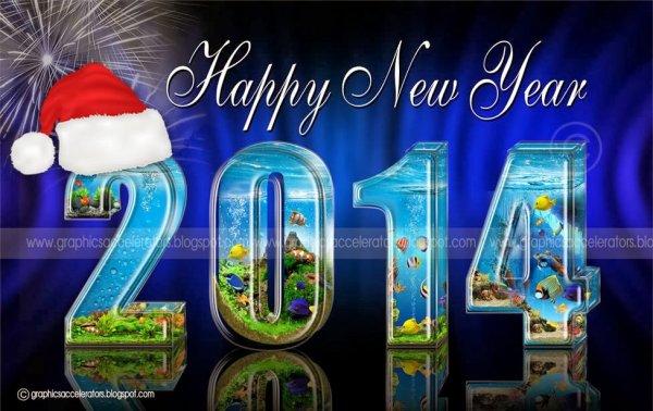 mes meilleur voeux pour 2014