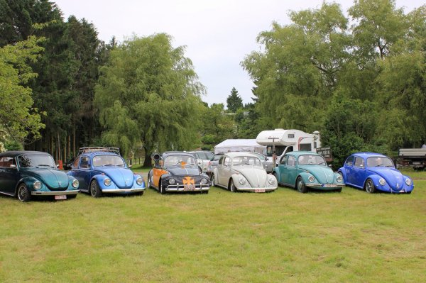 european bug-in 5 Chimay 2013