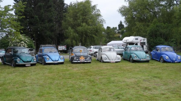 european bug-in 5 Chimay 2013