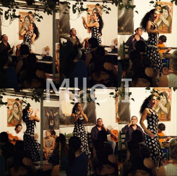 Saison 1 - Episode 20 - Celles qui iraient voir du Flamenco - Partie 2