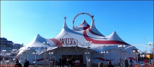 1ère partie ▪ Cirque Arlette Gruss ▪ La Rochelle (17)