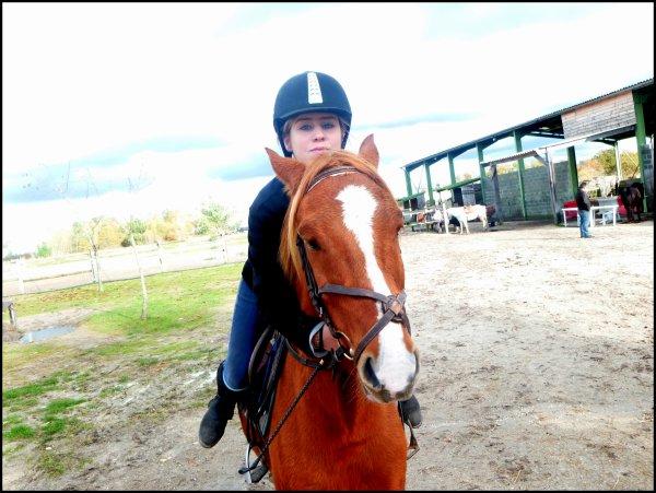 Il faut une seconde pour remarquer un cheval, une heure pour l'apprécier, une journée pour l'aimer, mais on ne peut pas l'oublier.!