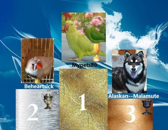 Resultats du Concours Photos de Juillet :