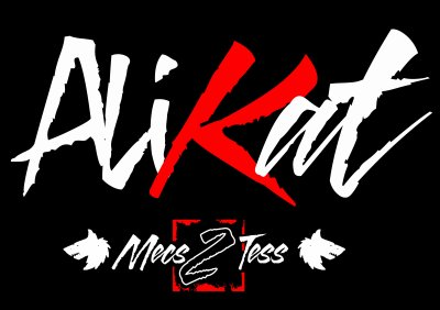 mec 2 tess vol.2 / (dirty money) alikat feat taniki larson et bad miky (2011)