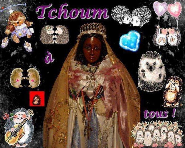 tchoum a tout les voyageurs et voyageuses ,manouches ,roms yeniches  et à toutes les communautés ,votre amie Rosie