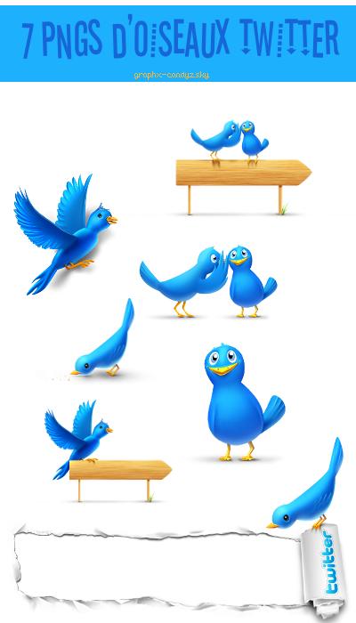 7 pngs d'oiseaux Twitter