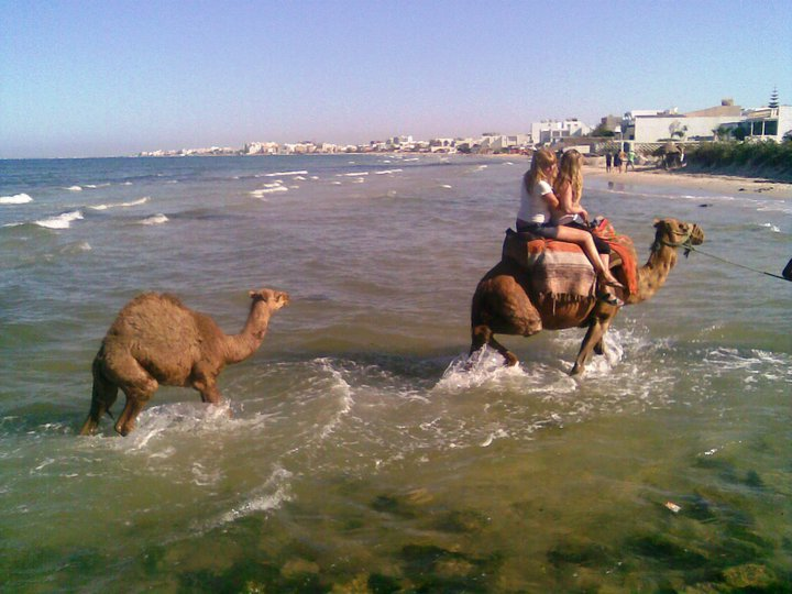 (l) In Sousse You Enjoy With Your life  (l)