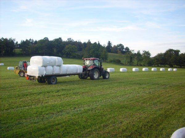 silo d'herbe