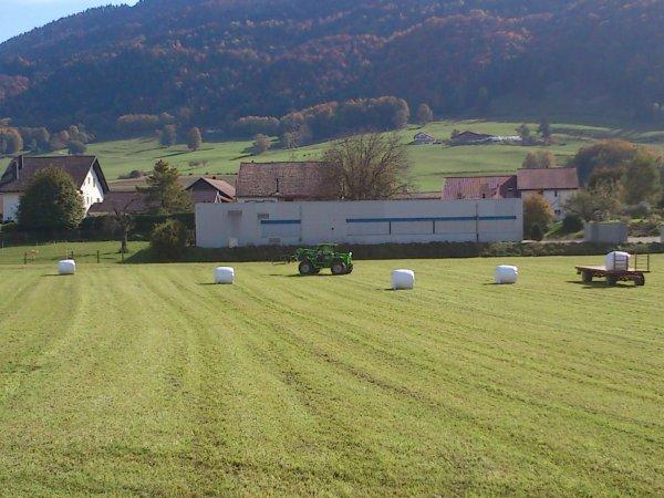 silo d'herbe tvt 190 avec machle fusion 2 et mermlo