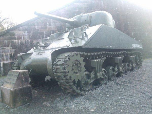 Scherman  power by  Fort Belfort