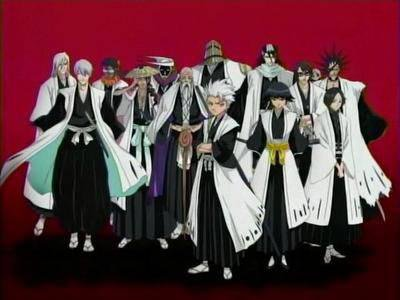 les capitaines (bleach)