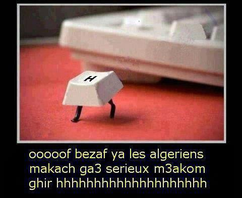 BzzF AlikoOom Ya Les AlGéRiens