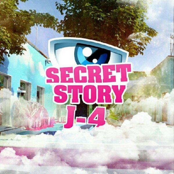 Secret Story 6 c'est dans 4 jours !