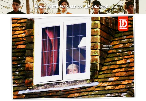 Niall Horan + Zayn Malik + Harry Styles