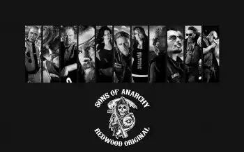 Sons of anarchy édition tv que j'aime
