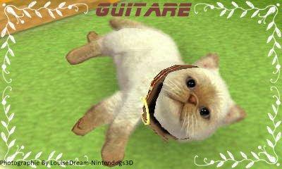 Présentation de Guitare