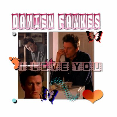 MONTAGE DAMIEN FAWKES
