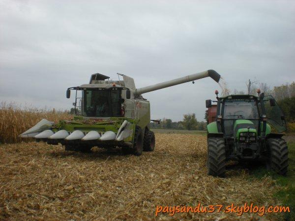 Battage maïs 2010