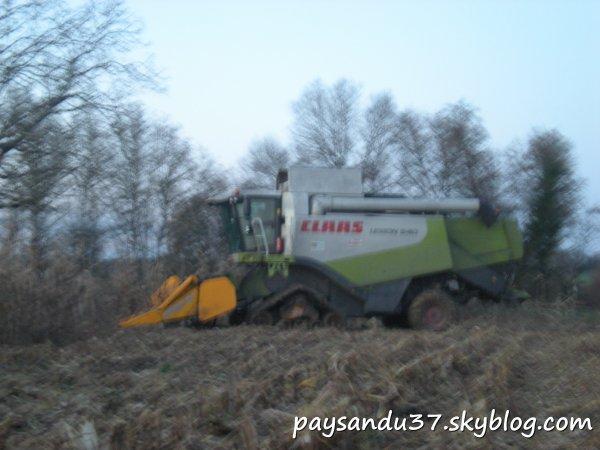 Battage du maïs 2010