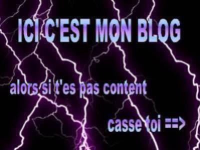 bienvenue sur mon blog !!! Les rageux sa degage