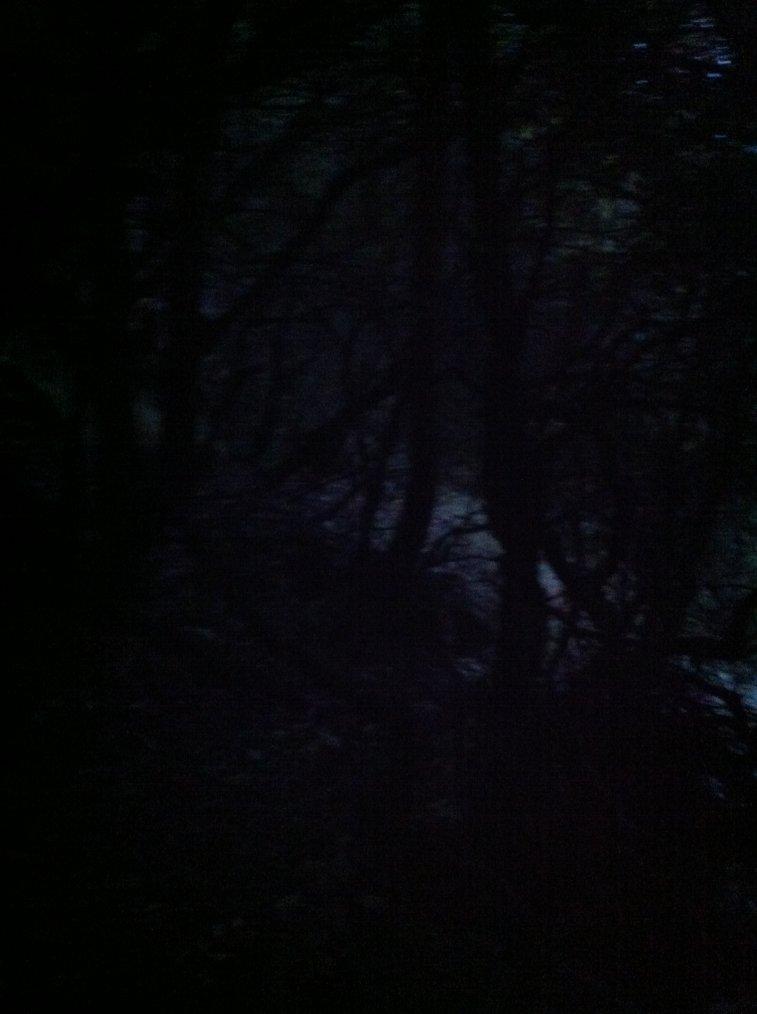 Jeudi 1 Novembre 2012 : Jusqu'au bout de la nuit !