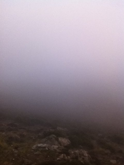 Samedi 9 Novembre 2013 : Brouillard pour moi, Solitaire pour mon père !