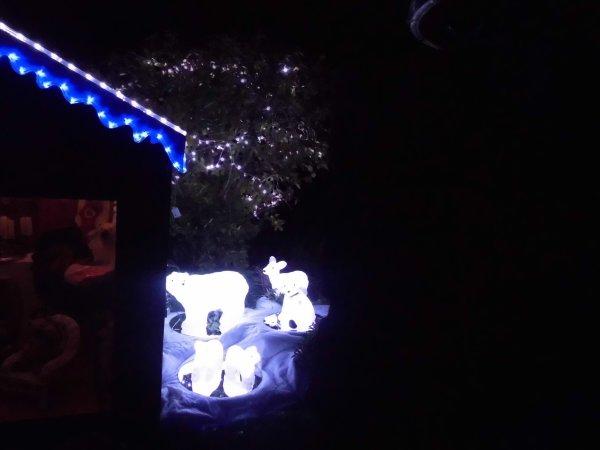 Installation des Illuminations 2012/2013 - Chapitre V